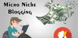 Micro Niche Blogging