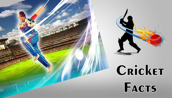 cricket facts and records