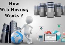 How Web Hosting Works ?