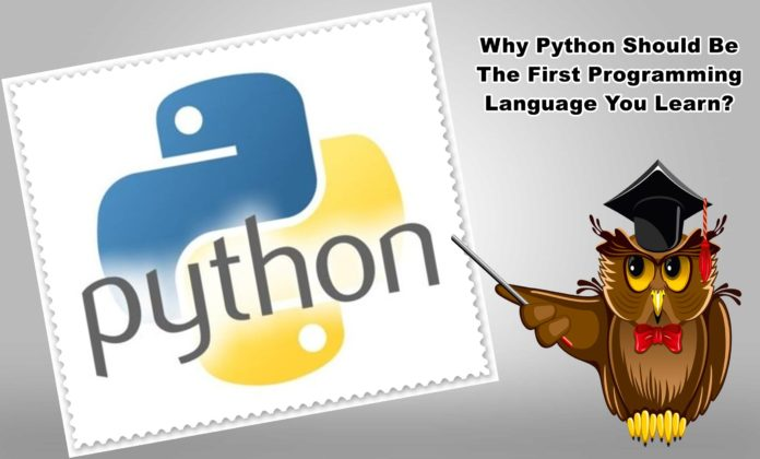 Why Python Should Be The First Programming Language You Learn?