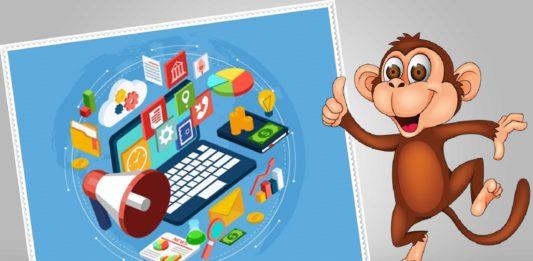 5 Internet Marketing Campaign Slayer Tools to Win Digital Battle