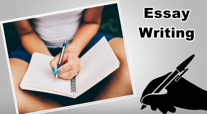 Requirements for custom essay writing
