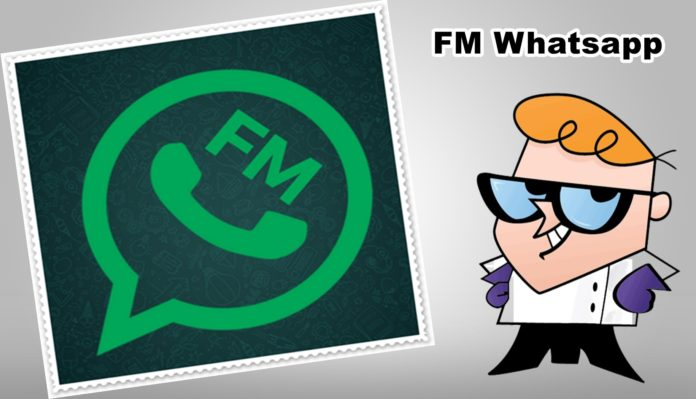 Top 5 Features of FM WhatsApp Apk You Must Know